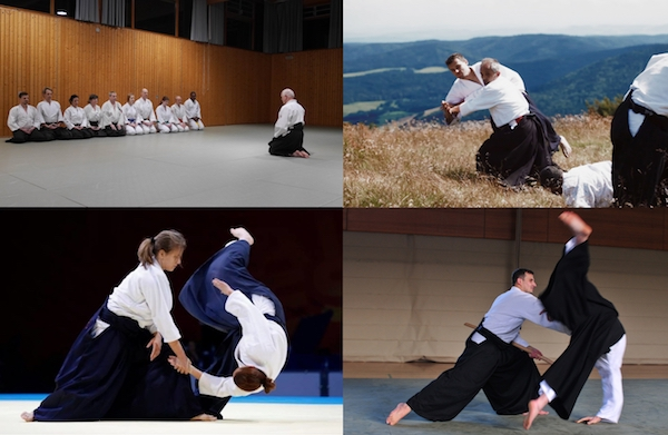 Aikido Workshop